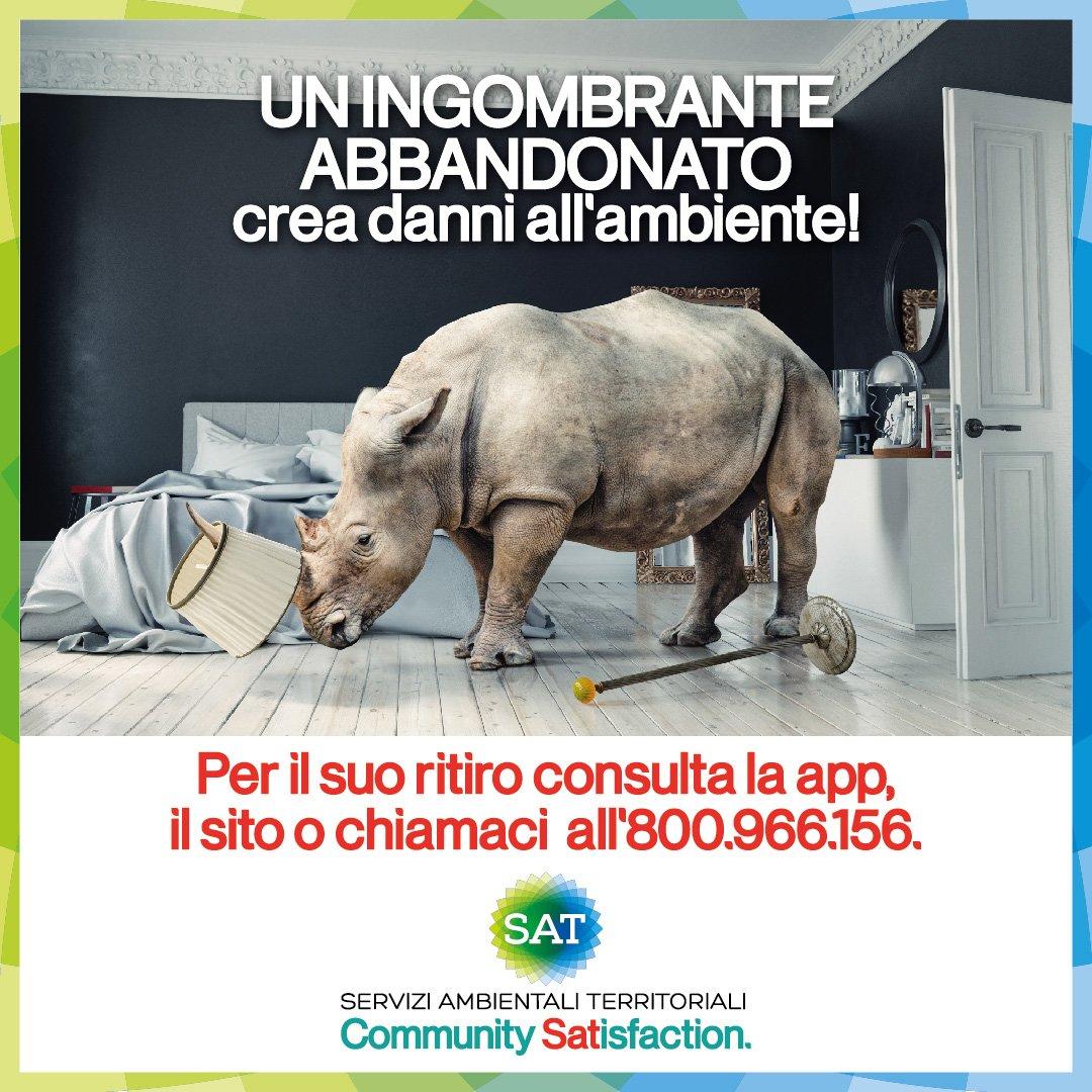 Social-1080-_Sat_Rinoceronte